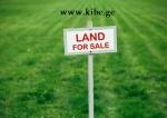 იყიდება - მიწა